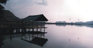 lake-foy