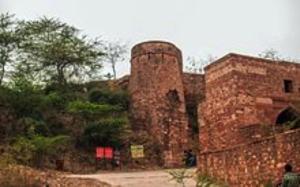 shergarh-dholpur