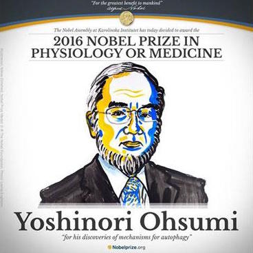 nobel-prize-2016-physiology-yoshinori-2016