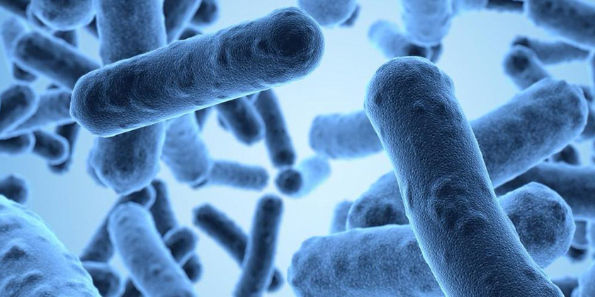 Antibiotic Resistance: Why a concern for India
