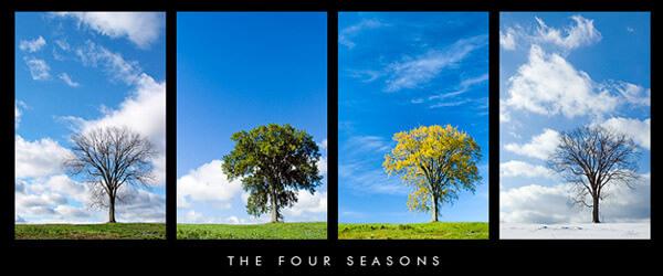 Weather Seasons in Rajasthan