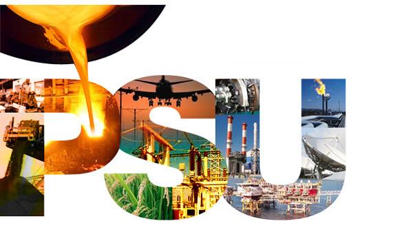 Public Sector Enterprises Undertakings