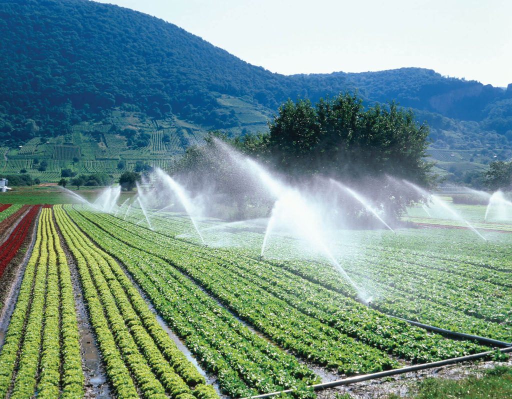 Irrigation in Rajasthan- Area, Sources, Types, Potential