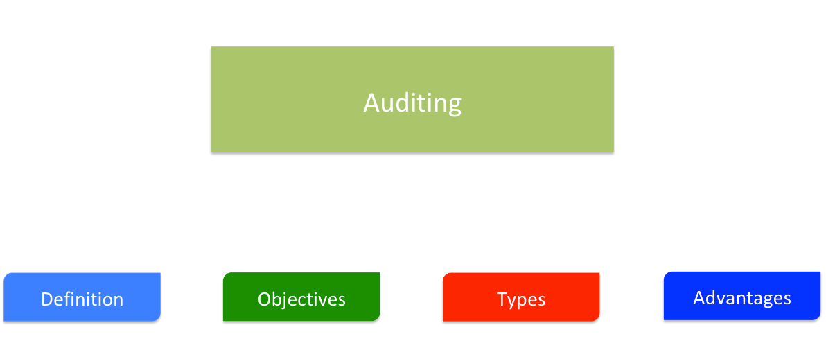 Auditing - Meaning, Objectives, Elements, Errors and Frauds