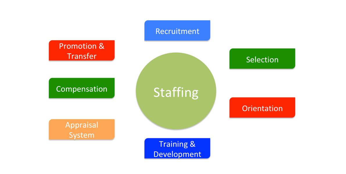 Recruitment, Selection, Training & Development