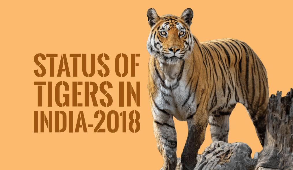 Status of Tigers in India 2018 - Summary Report Download PDF