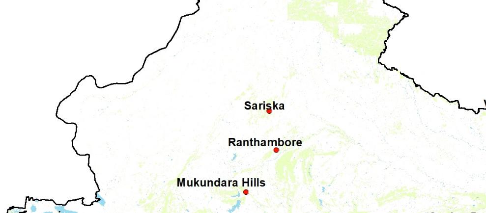 Tigers in Rajasthan   Tiger Reserves in Rajasthan