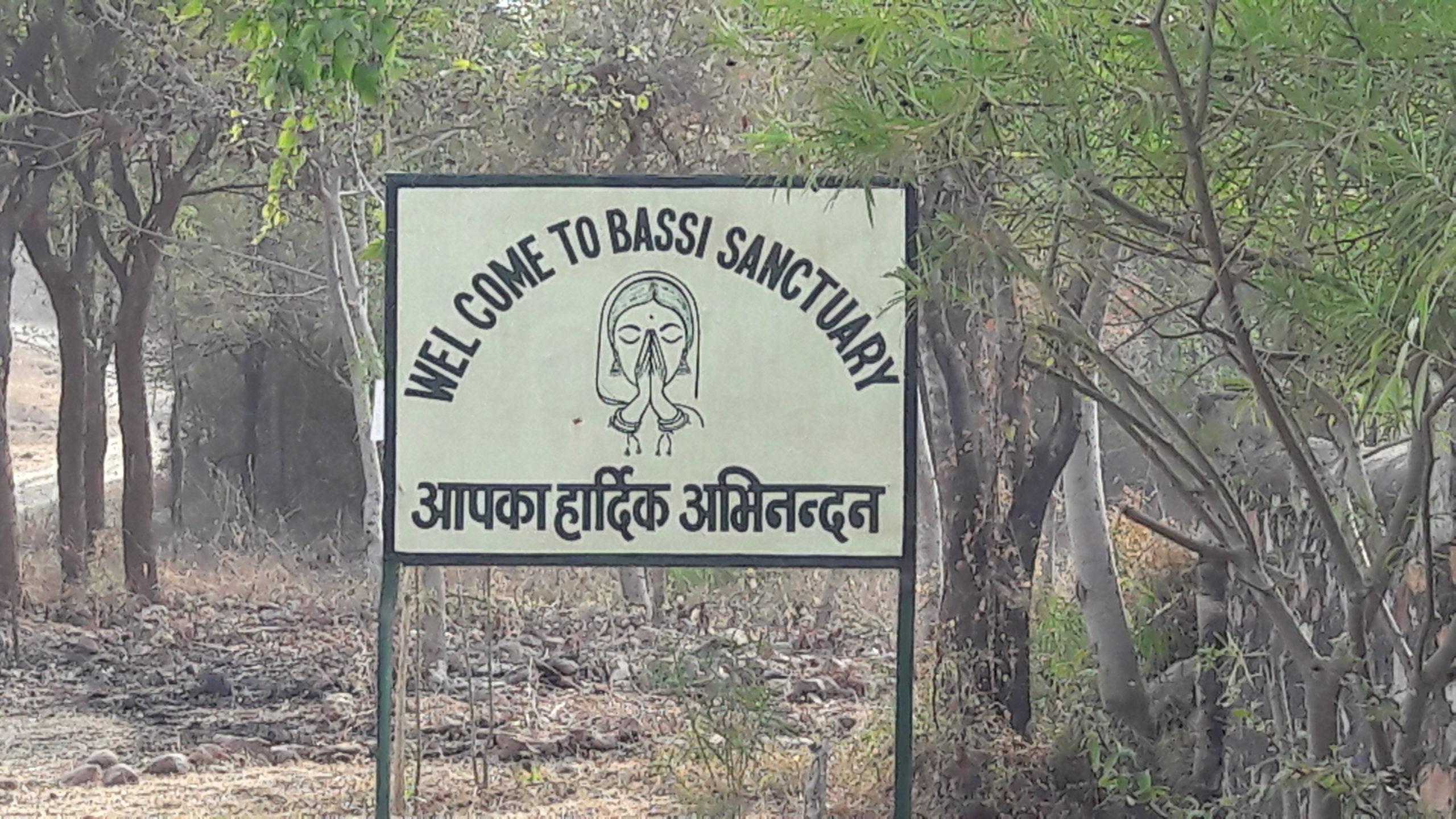 Bassi Wildlife Sanctuary in Rajasthan