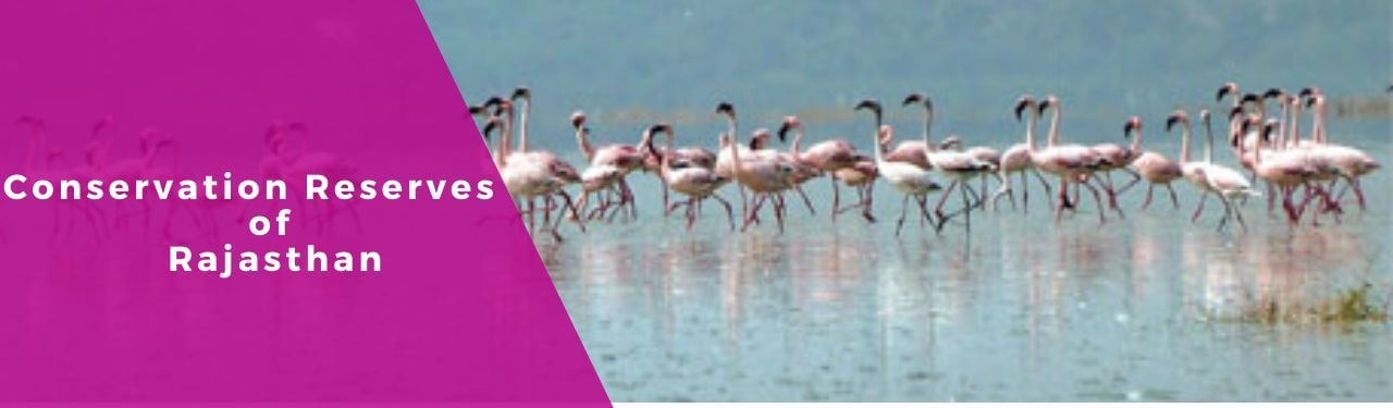 Conservation Reserves in Rajasthan