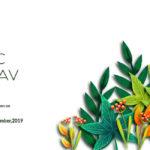 Organic-Mahotsav-2019-Udaipur-OFAI