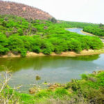 Ramgarh Vishdhari Wildlife Sanctuary in Bundi Rajasthan