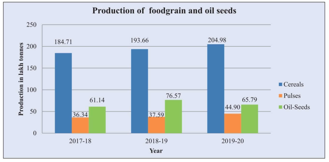 agriculture production in Rajasthan