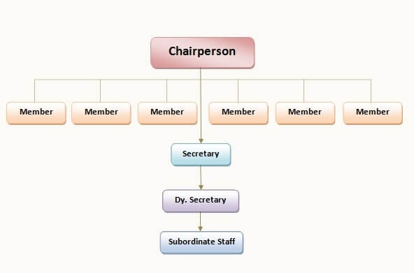 Organisation Structure of RSCPCR Rajasthan State Commission for Protection of Child Rights