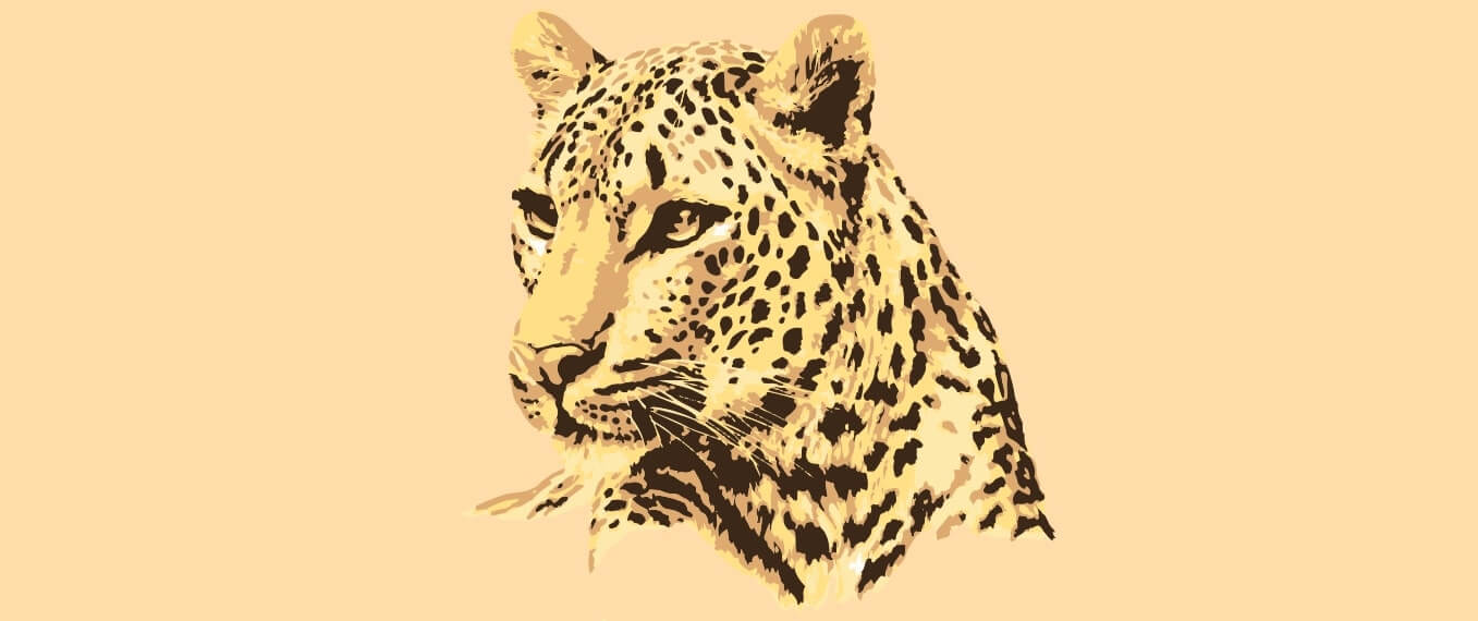Number of Leopards in India 2018  
