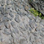 Stromatolites Geology   Bojunda Stromatolite Fossil Park