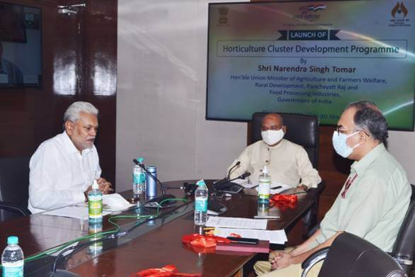 Featured Image Horticulture Cluster Development Programme